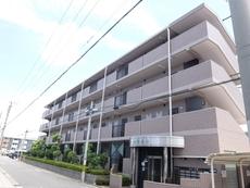 ベルデ堺東