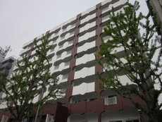 第1マンション寺直