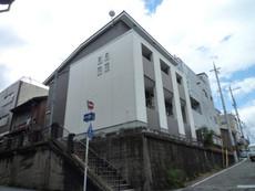 Castle Shinraku(キャッ...