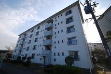 男山第二住宅116棟