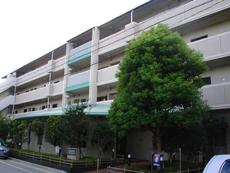サンテ東甲子園