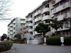 富田-100